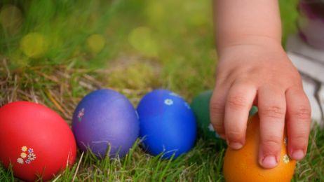 Jaja – symbol życia (kur)