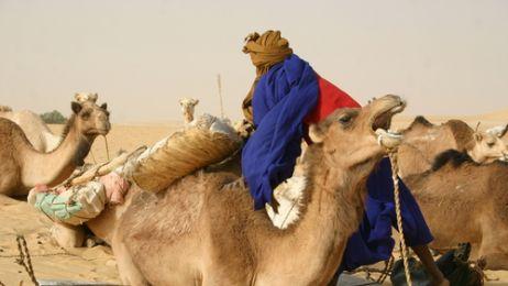 Po białe złoto Sahary