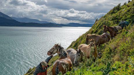 13-coaxing-horses-along-steep-cliffs-670