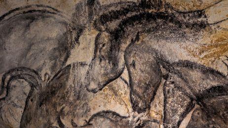 10-chauvet-horse-panel-670