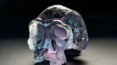 03a-homo-habilis-printed-skull-670