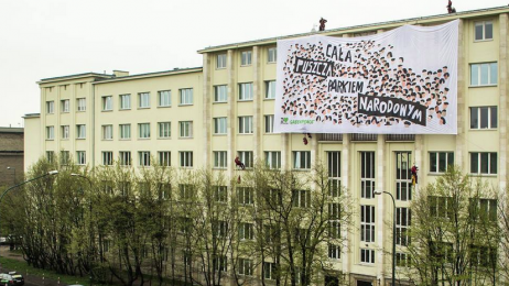 Puszcza białowieska greenpeace