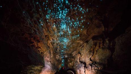 Świecąca jaskinia w Nowej Zelandii