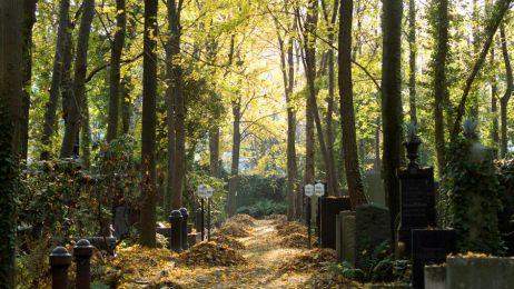 Ten cmentarz tętni życiem!
