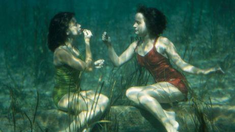 Podwodne widoki