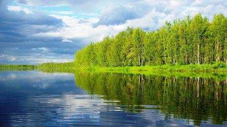 Morze zieleni i walka z rzeką. Odcinek 5 relacji z wyprawy do Laponii