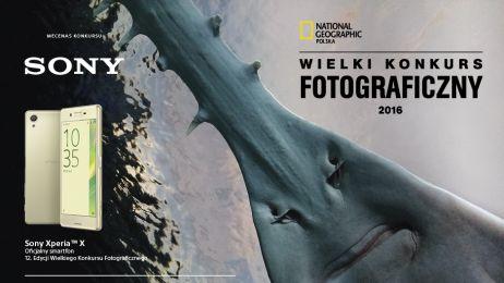 Wygraj Wielki Konkurs Fotograficzny! Dlaczego warto wysłać zdjęcie? Odpowiada nasz fotograf