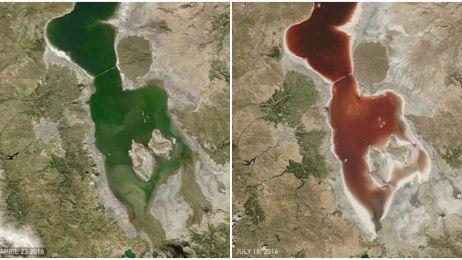 Było zielone, jest czerwone jak krew. Co się stało z jeziorem Urmia?