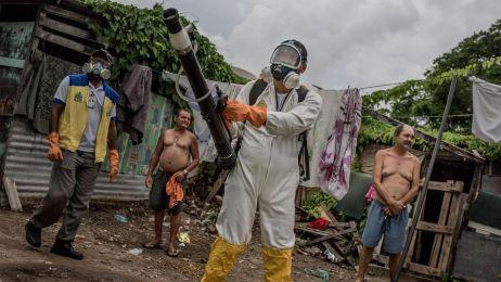 Wirus Zika jest w Polsce. Służby potwierdzają