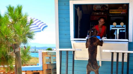 Crikvenica - bar i plaża przyjazne psom