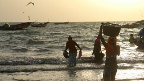 Gambia od podszewki