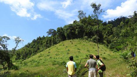 Księga Dżungli - niesamowita podróż do Tajlandii