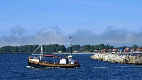 Sieci widma na Bałtyku