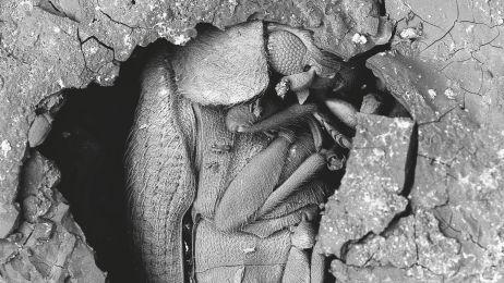 Mumia w chlebie