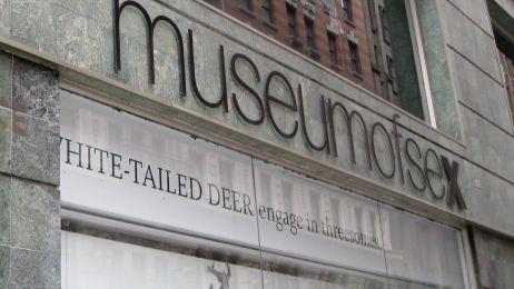 Muzeum Seksu w Nowym Jorku
