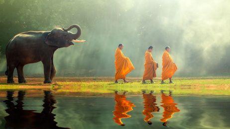 Czego nie robić w Tajlandii? [ETYKA PODRÓŻNIKA]