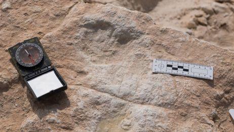 Ślad stopy liczący ponad 80 tyś. lat znaleziony na terenach obecnej Arabii Saudyjskiej