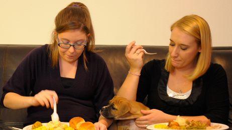 Wspólna kolacja? Nienajlepszy pomysł