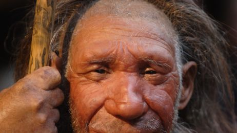 Rekonstrukcja neandertalczyka z Mettmann w Niemczech.