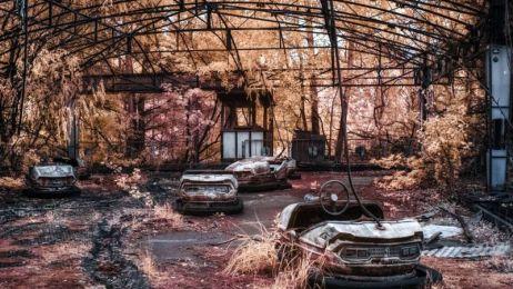 """Czarnobyl ponad 30 lat po wybuchu. Zobacz, jak wygląda """"wymarłe miasto"""""""