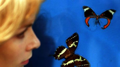 WHO alarmuje: liczba zachorowań na odrę wzrosła ośmiokrotnie w ciągu 2 lat. 37 ofiar śmiertelnych