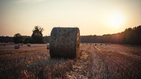 Inspiracja na jesienne weekendy: Polska Wschód