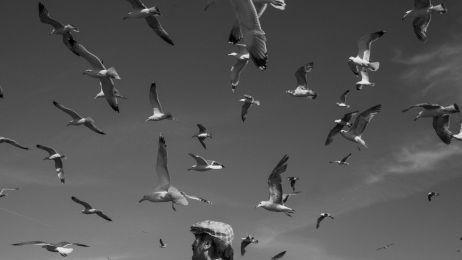 Co to znaczy być fotografem National Geographic? Zapraszamy na Dzień Fotografii z Mikołajem Nowackim
