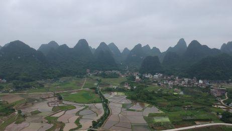 Chiny. Uprawy ryżu