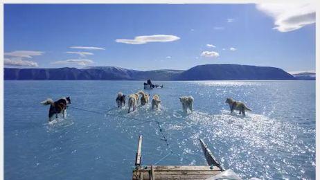 To szokujące zdjęcie jest ostrzeżeniem. Grenlandia jak jezioro