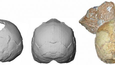 Ta tajemniczna czaszka z Grecji może zmienić to jak patrzymy na historię ludzkości