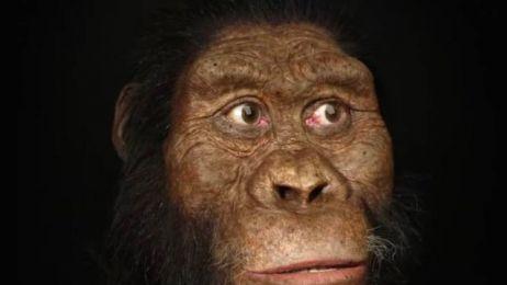 Po raz pierwszy możemy spojrzeć w twarz naszego praprzodka. Sprzed 3,8 mln lat