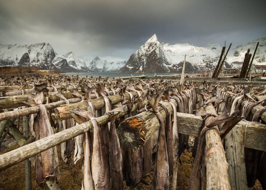 4. Zdjęcie  - Wielki Konkurs Fotograficzny National Geographic Polska 2015.