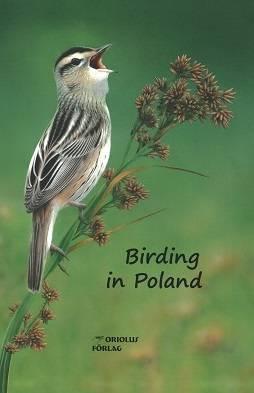 2. Zdjęcie  - Gdzie w Polsce podglądać ptaki? Radzą... Szwedzi