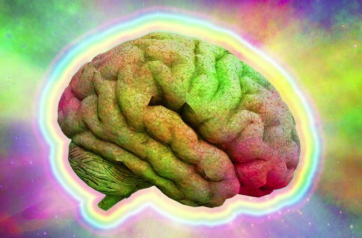 1. Zdjęcie  - Mózg pod wpływem LSD działa lepiej? Brytyjscy naukowcy to sprawdzili