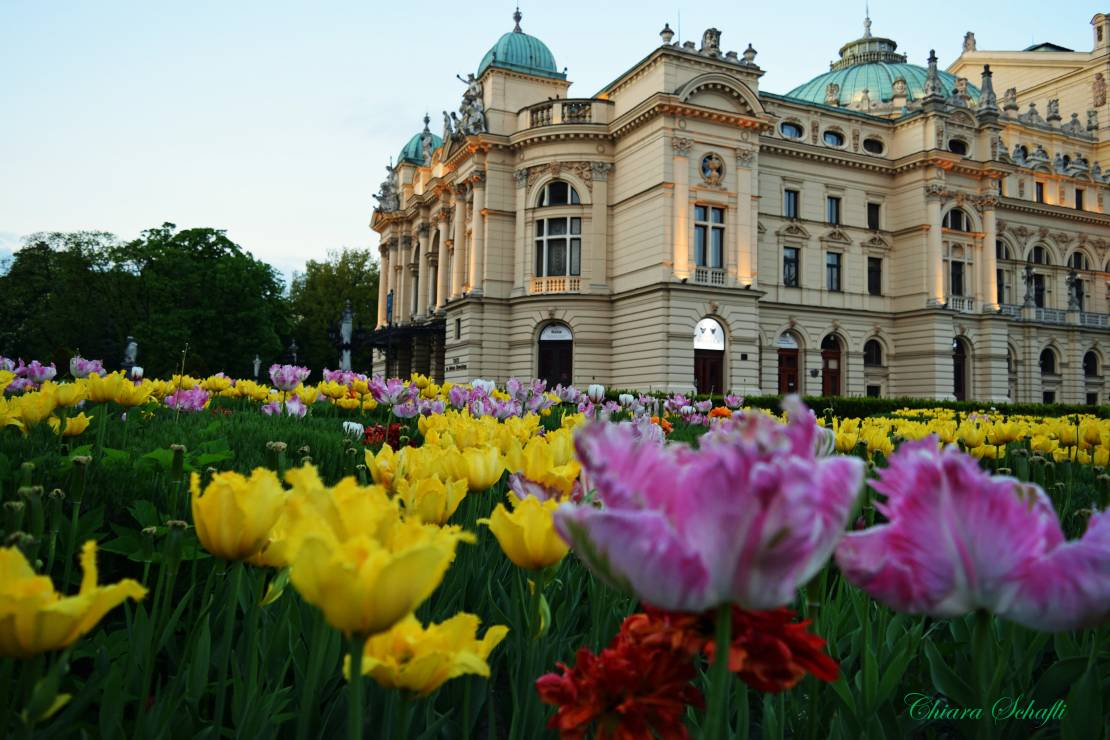 16. Zdjęcie  - Tak wygląda Kraków w oczach obcokrajowców. Niezwykły projekt fotograficzny [GALERIA]