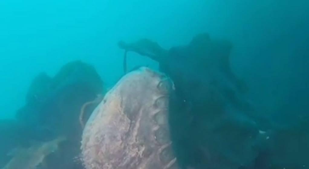 """Tego nikt się nie spodziewał. Statek HMS """"Terror"""" odnaleziony po prawie 170 latach - Tego nikt się nie spodziewał. Statek HMS """"Terror"""" odnaleziony po prawie 170 latach"""