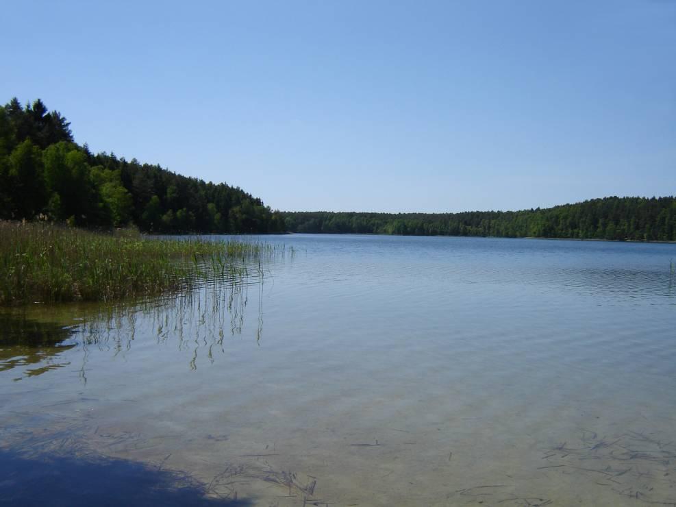 4. Jezioro Piaseczno, woj. lubelskie - 10 najpiękniejszych jezior w Polsce