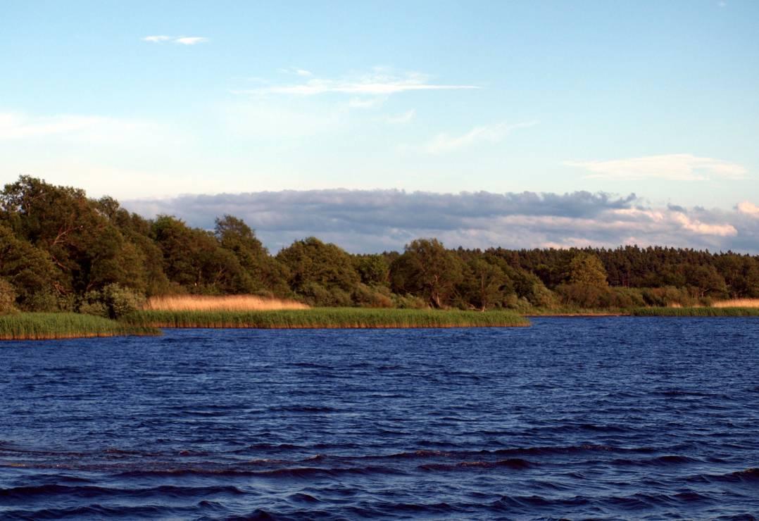 5. Jezioro Łebsko - 10 najpiękniejszych jezior w Polsce