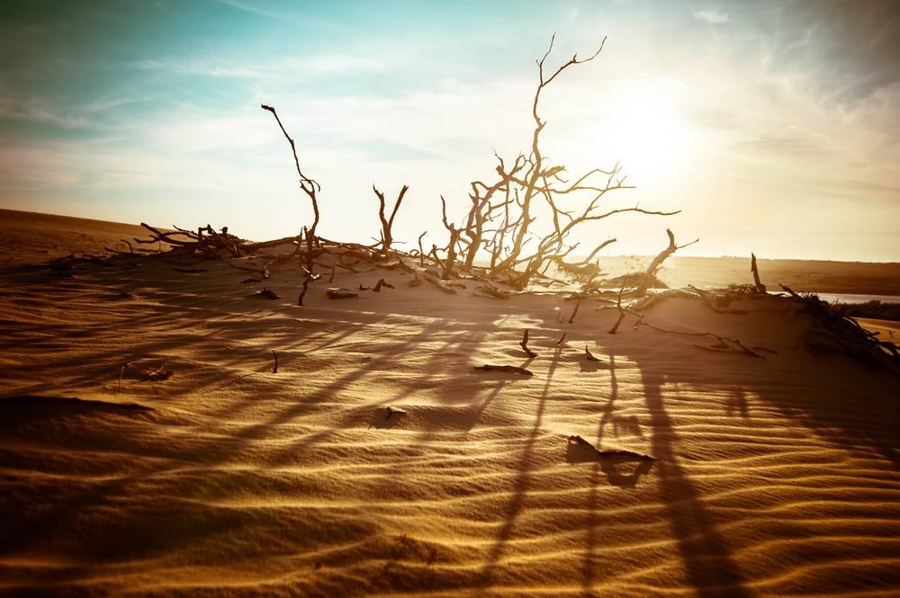 1. Świat jest coraz cieplejszy - 7 faktów na temat globalnego ocieplenia, które trzeba znać