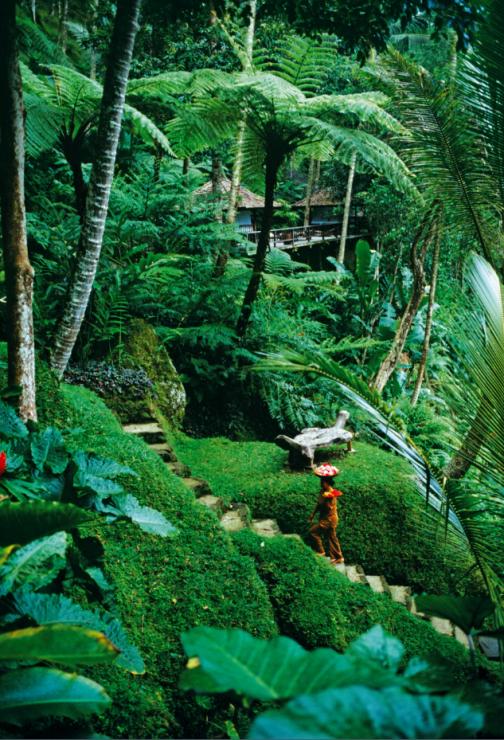 Bali słynie  z niesamowitych hoteli, jak Begawan Giri  w Ubud. - Postanowili mieć życie, które  będzie lepsze od wakacji. Wyjechali na Bali