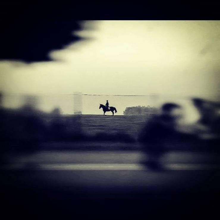 """I miejsce """"Koń i Człowiek"""" – Artur Wasilewski - Wyślij zdjęcia i zostań laureatem Wielkiego Konkursu Fotograficznego"""