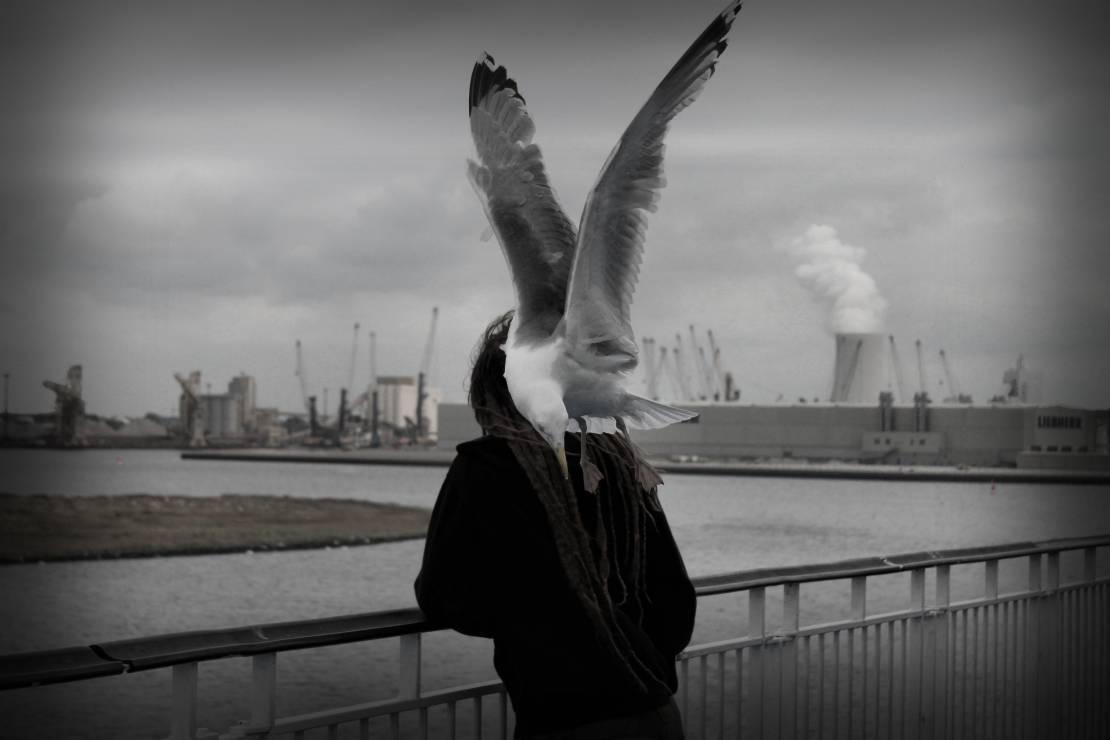 """I miejsce """"Anioł"""" – Ewa Laskowska - Wyślij zdjęcia i zostań laureatem Wielkiego Konkursu Fotograficznego"""
