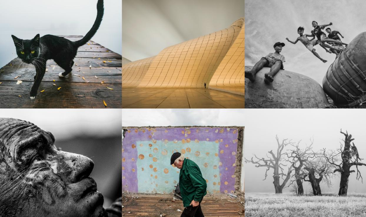 13. Wielki Konkurs Fotograficzny - 13. edycja Wielkiego Konkursu Fotograficznego za nami! Znamy zwycięzców