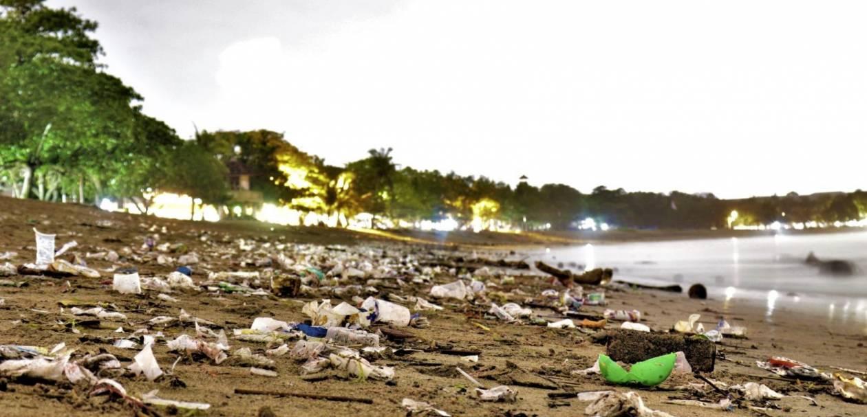 2. ...i na lądzie - 10 szokujących faktów na temat plastiku. Do 2050 roku wszystkie gatunki morskich ptaków będą go jeść