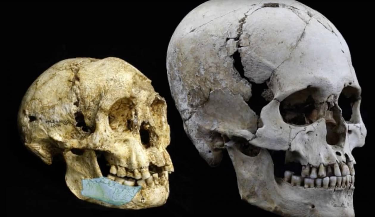 Porównanie czaszek na podstawie znalezisk. Człowiek z Luzon (po lewej) i Homo sapiens (z prawej) - Odkryto nowy gatunek człowieka. Nazywa się homo luzonensis
