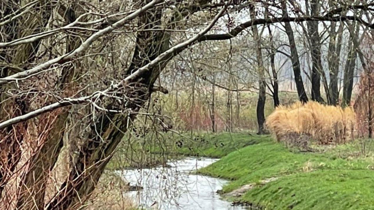 Akcja rzeka